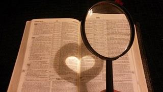 実施規程の作り方 辞書とルーペ